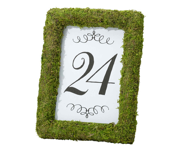 Lillian Rose Moss 4 x 6 Table Frame