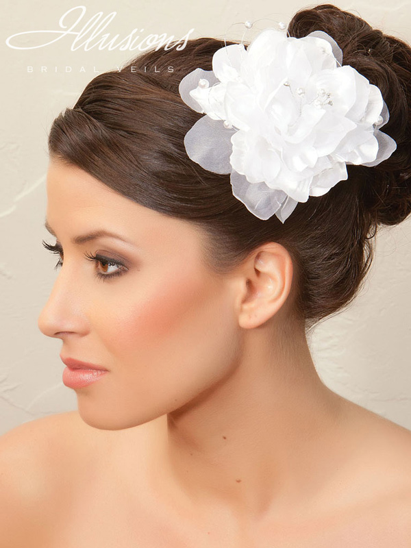 Illusions Bridal Hair Accessories 8258