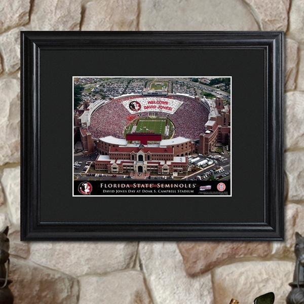 JDS Personalized Print with Wood Frame: College Stadium