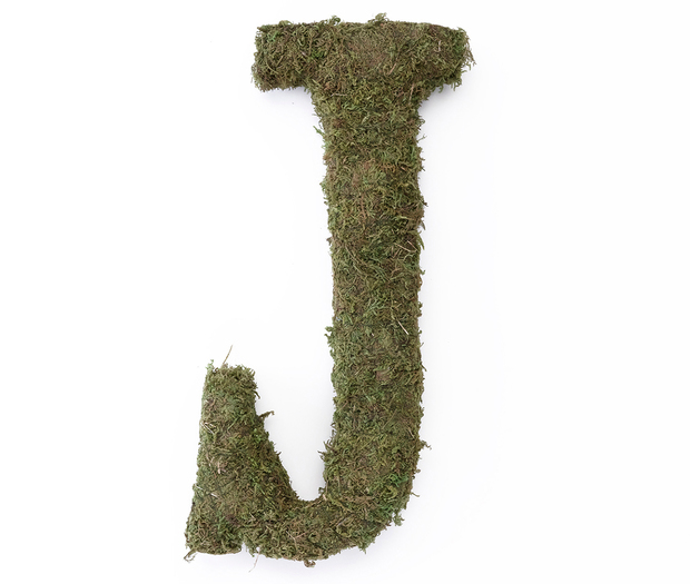 Lillian Rose Large Moss Monogram Letter - 15 inch, J