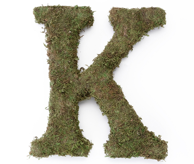Lillian Rose Large Moss Monogram Letter - 15 inch, K