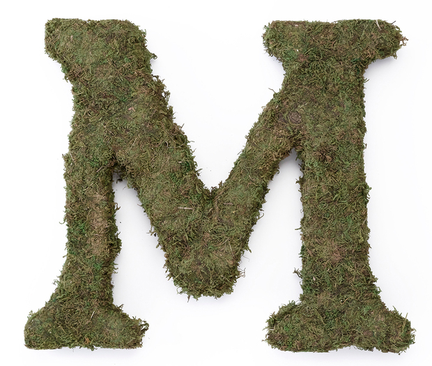 Lillian Rose Large Moss Monogram Letter - 15 inch, M