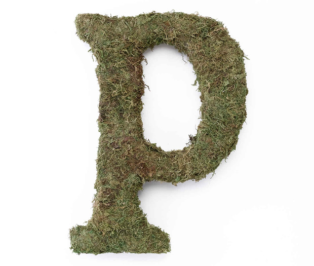 Lillian Rose Large Moss Monogram Letter - 15 inch, P
