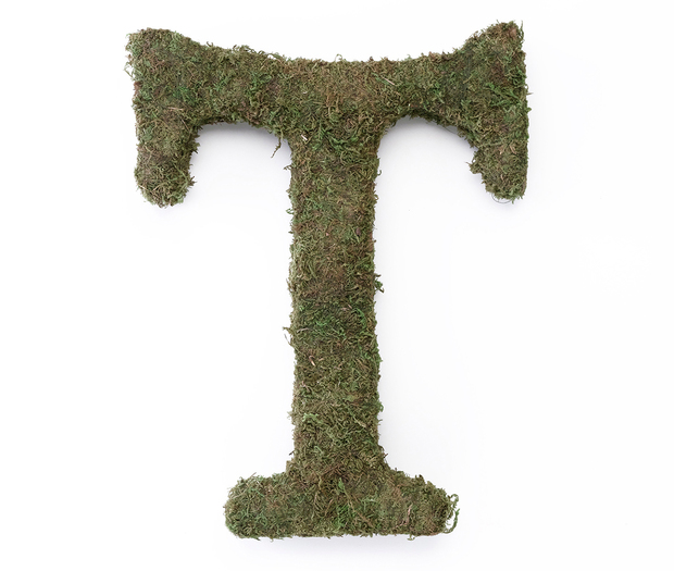 Lillian Rose Large Moss Monogram Letter - 15 inch, T
