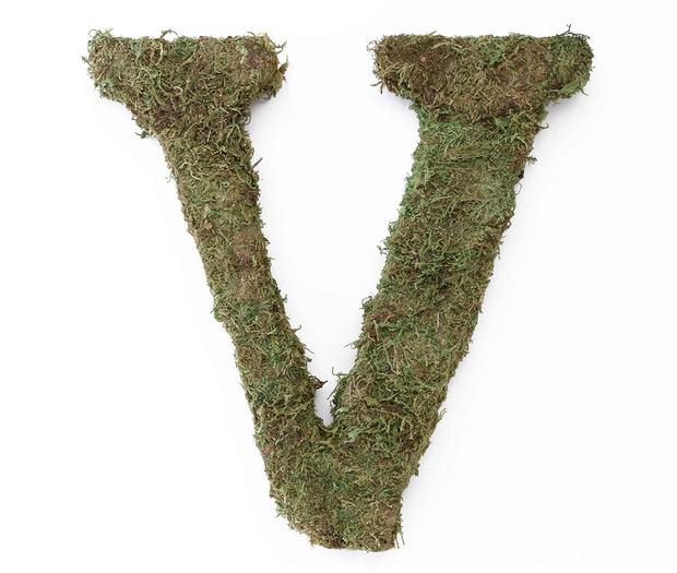 Lillian Rose Large Moss Monogram Letter - 15 inch, V