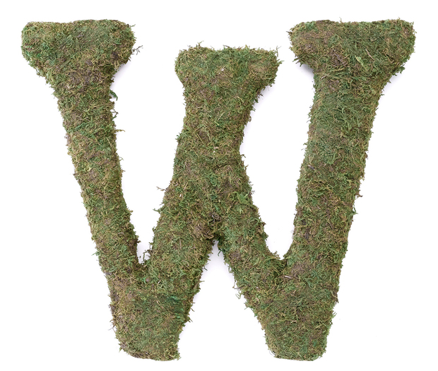 Lillian Rose Large Moss Monogram Letter - 15 inch, W