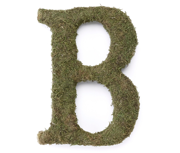 Lillian Rose Large Moss Monogram Letter - 15 inch, B