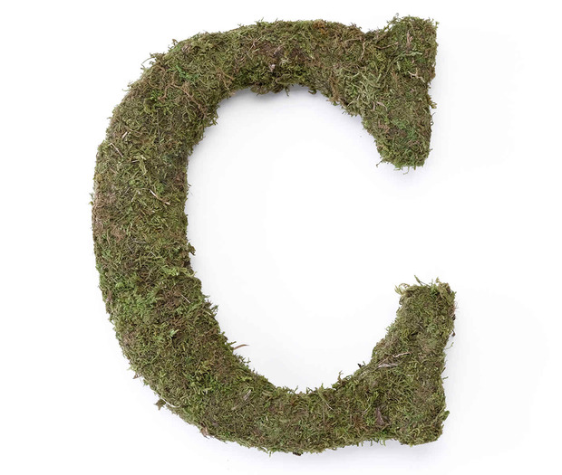 Lillian Rose Large Moss Monogram Letter - 15 inch, C