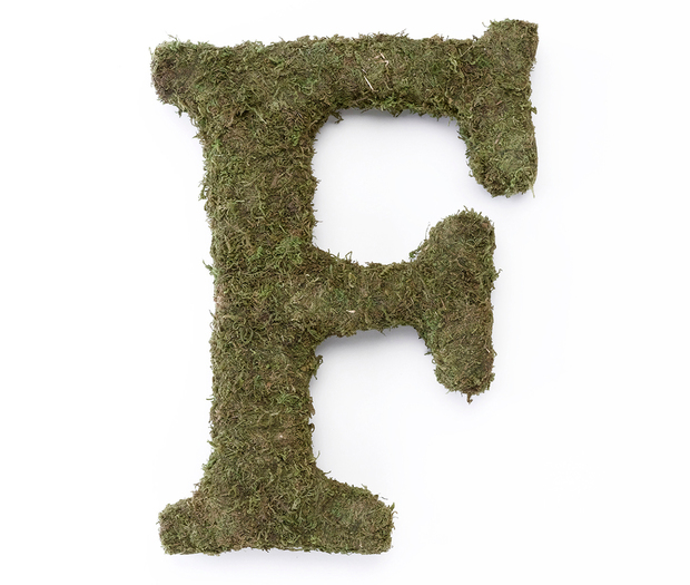 Lillian Rose Large Moss Monogram Letter - 15 inch, F