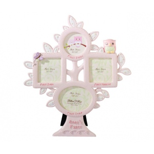 Lillian Rose Pink Owl 1st Year Frame