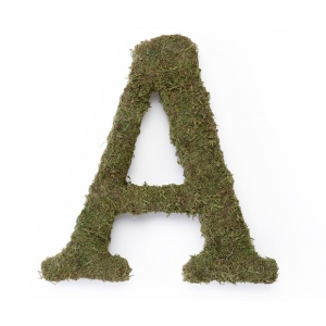 Lillian Rose Large 15 inch Moss Monogram Letter - A