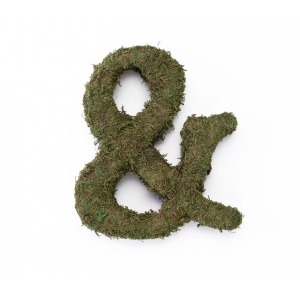 Lillian Rose Large 15 inch Moss Monogram Letter - Ampersand