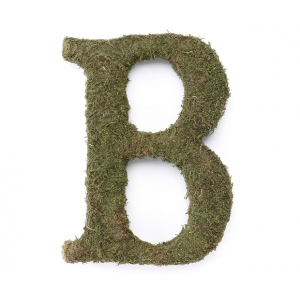 Lillian Rose Large 15 inch Moss Monogram Letter - B