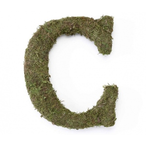 Lillian Rose Large 15 inch Moss Monogram Letter - C