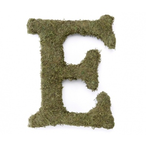 Lillian Rose Large 15 inch Moss Monogram Letter - E