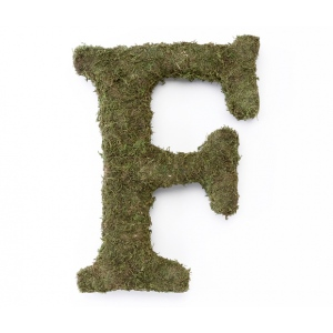 Lillian Rose Large 15 inch Moss Monogram Letter - F