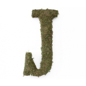 Lillian Rose Large 15 inch Moss Monogram Letter - J