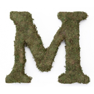 Lillian Rose Large 15 inch Moss Monogram Letter - M