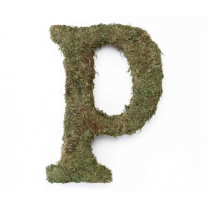 Lillian Rose Large 15 inch Moss Monogram Letter - P
