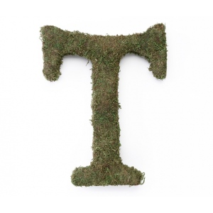 Lillian Rose Large 15 inch Moss Monogram Letter - T