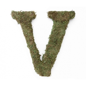 Lillian Rose Large 15 inch Moss Monogram Letter - V