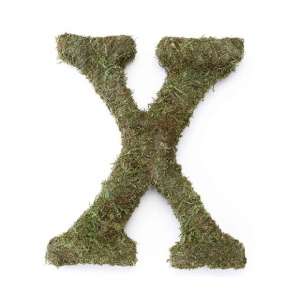 Lillian Rose Large 15 inch Moss Monogram Letter - X