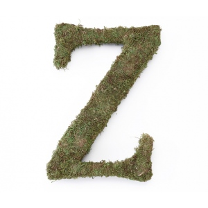 Lillian Rose Large 15 inch Moss Monogram Letter - Z