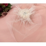 Lillian Rose Veil with Feather - Ivory